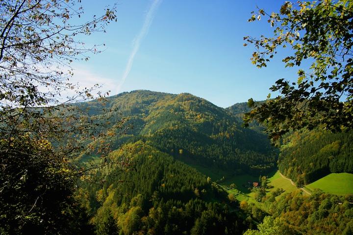 Der Schwarzwald pur